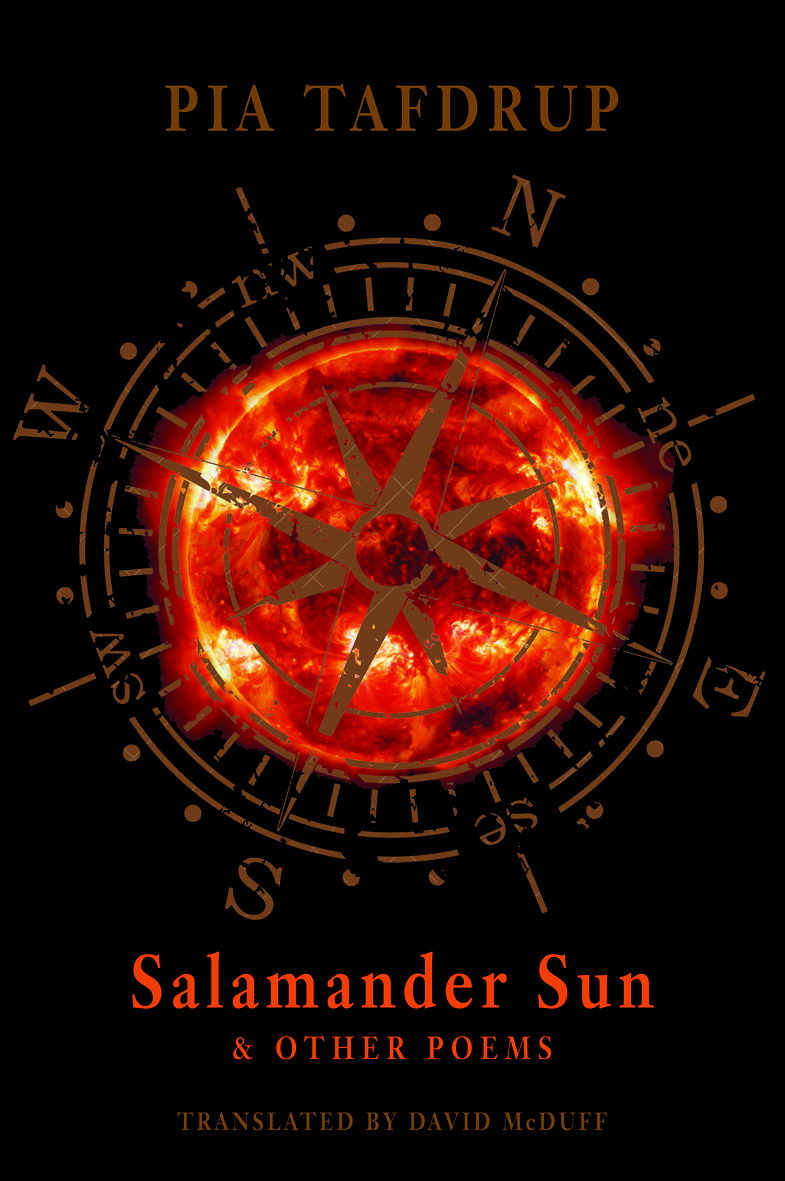 Salamander Sun & Other Poems
